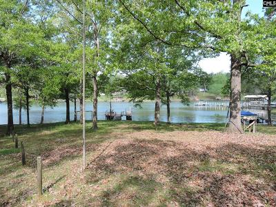 Lexington County, Newberry County, Richland County, Saluda County Single Family Home For Sale: 182 Hollaway Cove