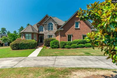 Lexington County Single Family Home For Sale: 40 Hickory Hollow
