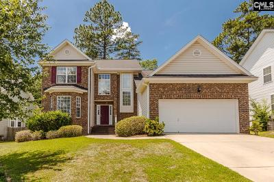 Lexington County Single Family Home For Sale: 228 Oldtown