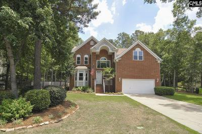 Irmo Single Family Home For Sale: 113 Hollingshed Creek Blvd