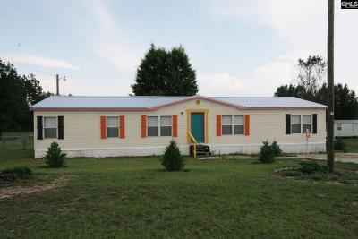 Lexington County Single Family Home For Sale: 156 Peeler