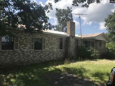 Batesburg Single Family Home For Sale: 541 Thunder