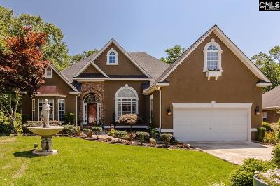 Lexington County, Richland County Single Family Home For Sale: 413 Annondale