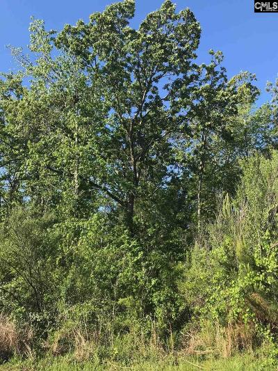 Lexington County, Richland County Residential Lots & Land For Sale: 128 Pintail Lake