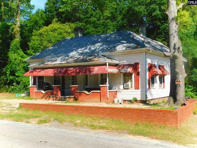 Batesburg, Leesville Single Family Home For Sale: 547 Howard