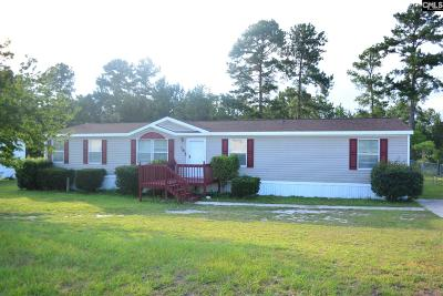 Lexington Single Family Home For Sale: 165 Peak View