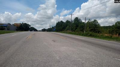 Lexington County Residential Lots & Land For Sale: N Main