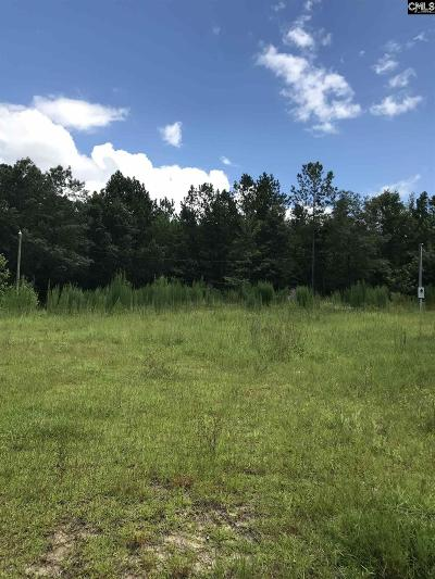Lexington County, Richland County Residential Lots & Land For Sale: 1242 Chain Gang