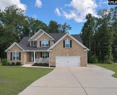 Lexington Single Family Home For Sale: 357 Scarborough