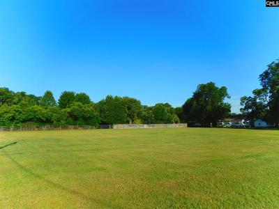 Commercial Lots & Land For Sale: N Carolina