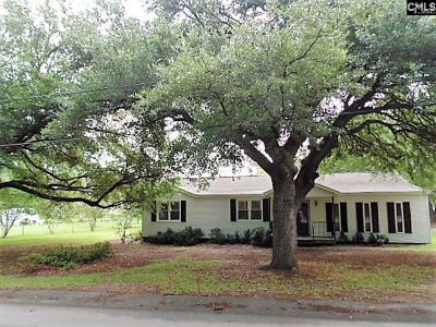 West Columbia Single Family Home For Sale: 1117 Lown Dr
