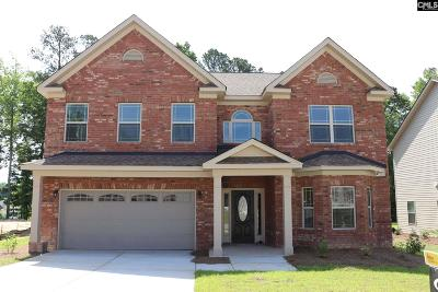 Blythewood Single Family Home For Sale: 374 Glen Dornoch
