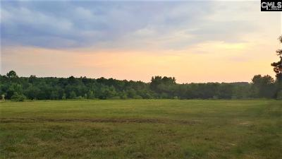 Prosperity Residential Lots & Land For Sale: Sc Highway 391