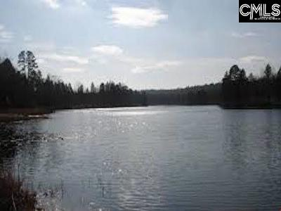 Residential Lots & Land For Sale: 233 Living Waters