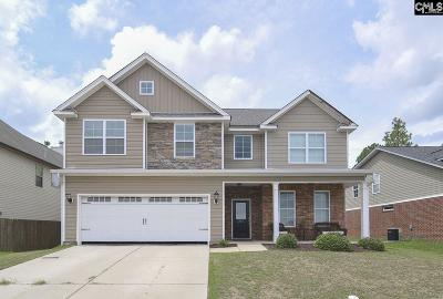 Lexington County, Richland County Single Family Home For Sale: 271 Keegan Rock