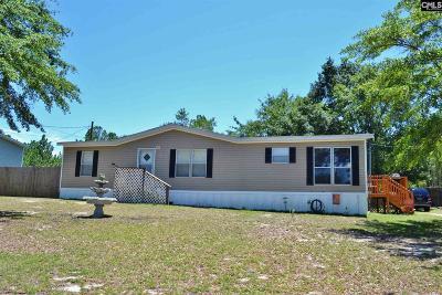 Lexington Single Family Home For Sale: 167 Boiling Springs