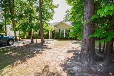 Elgin Single Family Home For Sale: 244 Elmwood