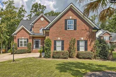 Chapin Single Family Home For Sale: 2 Clay