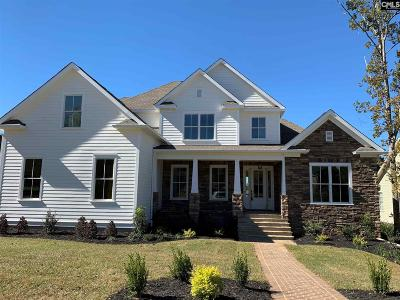 Lexington County Single Family Home For Sale: 407 River Club