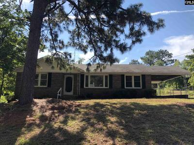 Lexington County, Richland County Single Family Home For Sale: 241 Lincoln