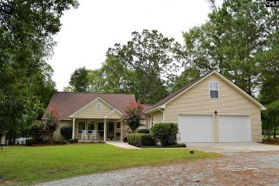 Lexington County, Newberry County, Richland County, Saluda County Single Family Home For Sale: 1043 Seagull