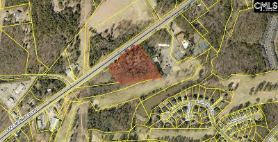 Richland County, Kershaw County, Lexington County Residential Lots & Land For Sale: 2141 Lake Murray