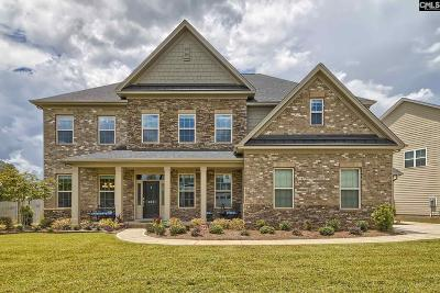 Chapin SC Single Family Home For Sale: $464,900