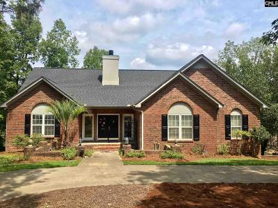 Lexington County, Newberry County, Richland County, Saluda County Single Family Home For Sale: 380 Limestone