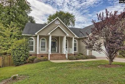 Irmo Single Family Home For Sale: 133 Wicklow