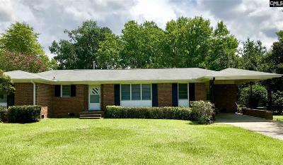Orangeburg Single Family Home For Sale: 369 Hodges