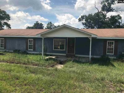 Elgin Single Family Home For Sale: 2517 Sandy