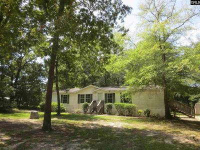 Lexington County, Richland County Single Family Home For Sale: 1213 Mount Elon Church