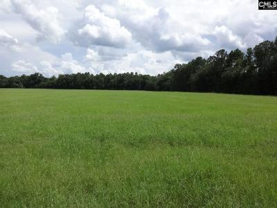 Wagener Residential Lots & Land For Sale: S Dixie