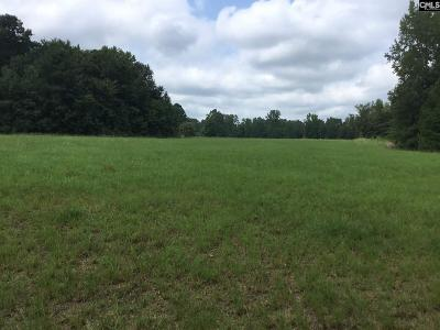 Lugoff Residential Lots & Land For Sale: 1326 Kellytown