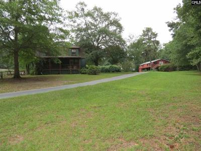 Blythewood Single Family Home For Sale: 214 McLean