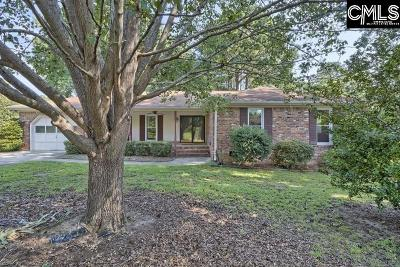 Irmo Single Family Home For Sale: 119 Hayburg