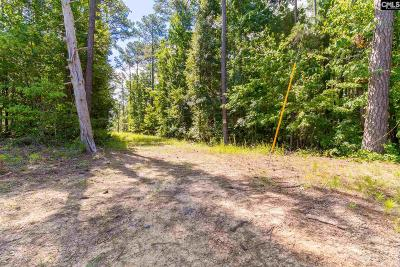 Lexington County, Richland County Residential Lots & Land For Sale: 169 Payne