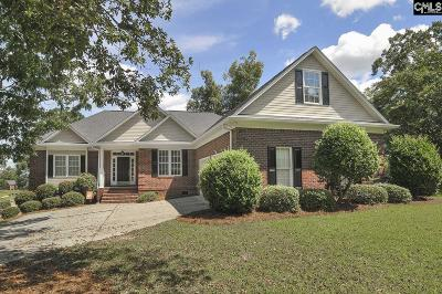 Lexington County, Richland County Single Family Home For Sale: 1300 Martins Camp Ln