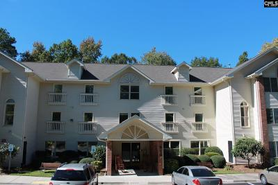 Lexington County, Richland County Condo For Sale: 910 Poinsett Place #7