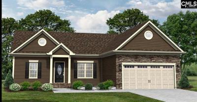 Orangeburg Single Family Home For Sale: 126 Airy Hall #33 #33