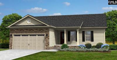 Orangeburg Single Family Home For Sale: 199 Airy Hall #17 #17