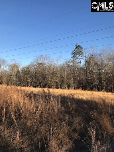 Batesburg, Leesville Residential Lots & Land For Sale: 249 Kyzer