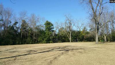 Batesburg, Leesville Residential Lots & Land For Sale: 317 Caughman