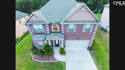 Blythewood Single Family Home For Sale: 219 View