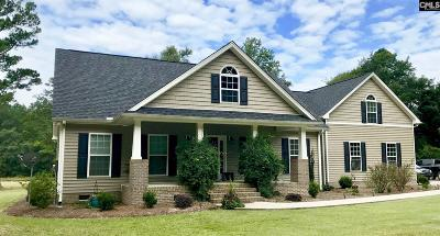 Orangeburg Single Family Home For Sale: 60 Brassie