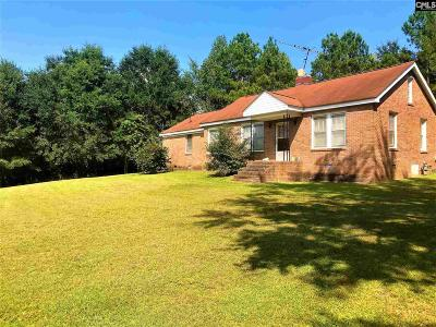 Newberry Single Family Home For Sale: 12316 Sc Highway 121
