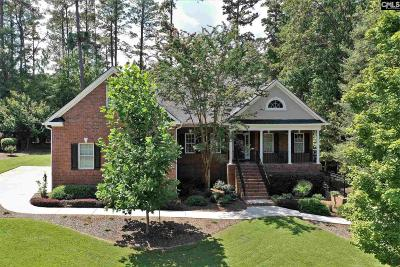 Chapin Single Family Home For Sale: 390 Timberlake