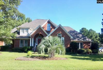 Chapin SC Single Family Home For Sale: $389,000