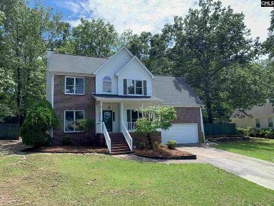 Lexington County, Richland County Single Family Home For Sale: 313 Dove Ridge