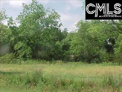 Residential Lots & Land For Sale: Hwy #1